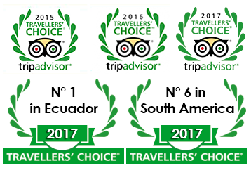premios-tripadvisor